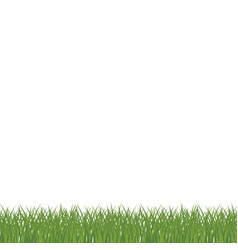 Cartoon grass vector