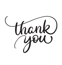 thank you text on white background calligraphy vector image vector image