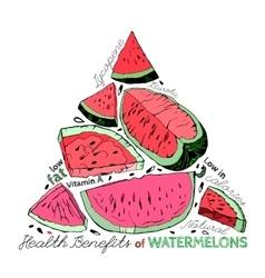 Watermelon benefits 02 a vector