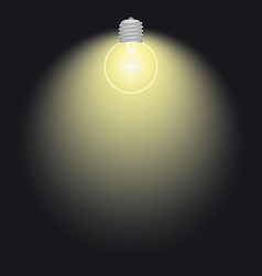 Lighting bulb lamp vector