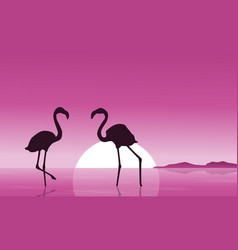 Collection of flamingo at sunset scenery vector