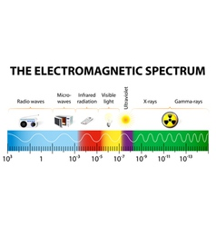 The electromagnetic spectrum diagram vector