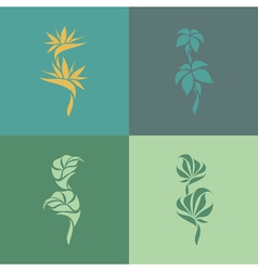 Tropical plants Set of design elements vector image