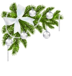 Christmas card Green branch of fir with vector image