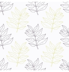 Hand drawn curry leaves and branch outline vector
