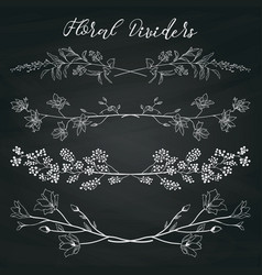 chalk drawing dividers with branches plants and vector image vector image