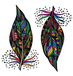 Decorative feathers Hand drawn vector image vector image