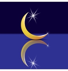 Crescent with a star and its reflection with vector image