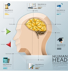 Human head with brain three dimension polygon vector