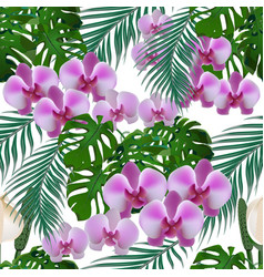 Jungle green tropical leaves orchid flowers and vector