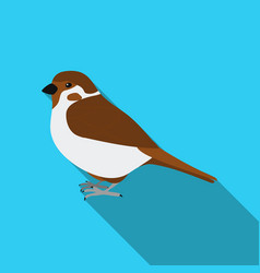 Sparrow icon in flate style isolated on white vector