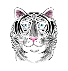 Portrait of tiger vector