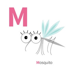 Letter m mosquito zoo alphabet insect english abc vector