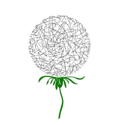 Dandelion in the form of a circle of random lines vector