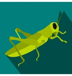 Grasshoppers icon in flat style vector