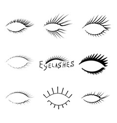 realistic eyelash textures vector image vector image