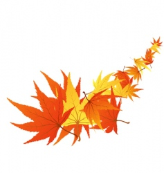 twisted leaves vector image vector image
