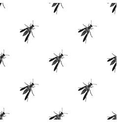 Wasp hymenopteran insectwasp stinging insect vector