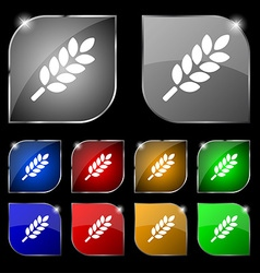 Wheat ears icon sign set of ten colorful buttons vector