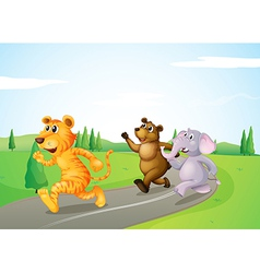 A tiger a bear and an elephant running along the vector image