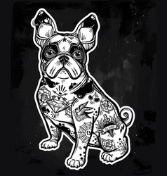 vintage bulldog or pug decorated in flash tattoos vector image
