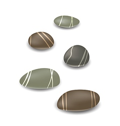 Sea pebbles collection with shadows on white vector