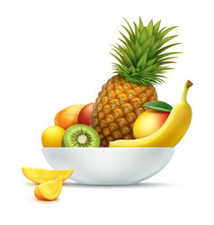 Plate full of tropical fruits vector