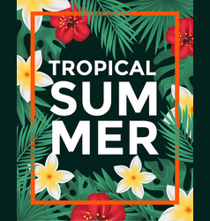 tropical poster vector image