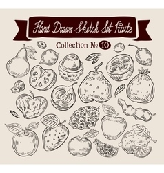 Fruit hand drawn sketch set food vector