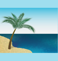 A tropical green palm tree on the sandy beach of vector
