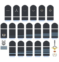 Royal Air Force insignia vector image