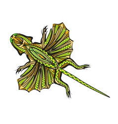 Ethnic flying lizard vector