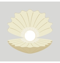 Beautiful natural open pearl vector image vector image