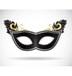 Masquerade carnival mask icon vector