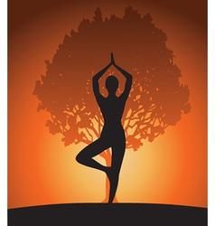 Woman in yoga tree asana vector