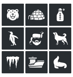 Antarctica icons set vector image vector image