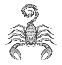 scorpion zentangle icon vector image