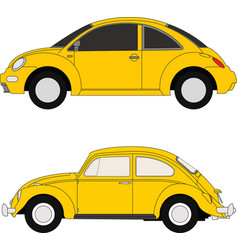 yellow beetles vector image vector image