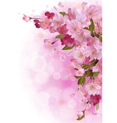 Vertical card with gentle pink sakura flowers vector image