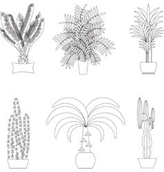 Tropical plants set of flat potted houseplants vector