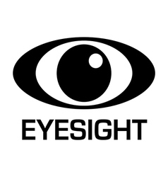 Eyesight icon vector