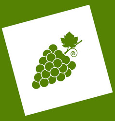 Grapes sign white icon vector