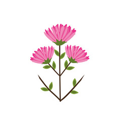 pink flower bunch image vector image