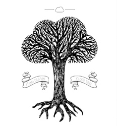 Tree crown in the shape of cloud vector image vector image