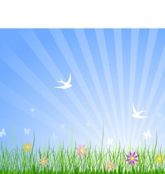 spring meadow background vector image