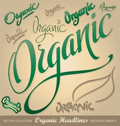 Organic hand lettering vector