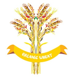 Label design for organic wheat vector