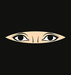 Womans eyes vector