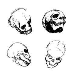 Skull from different views vector