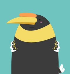 cute big fat hornbill bird vector image